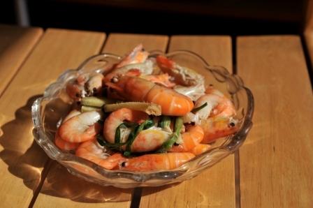 盐水沼虾.JPG