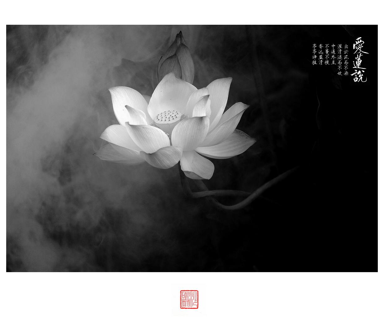 GM0A3423_副本.jpg