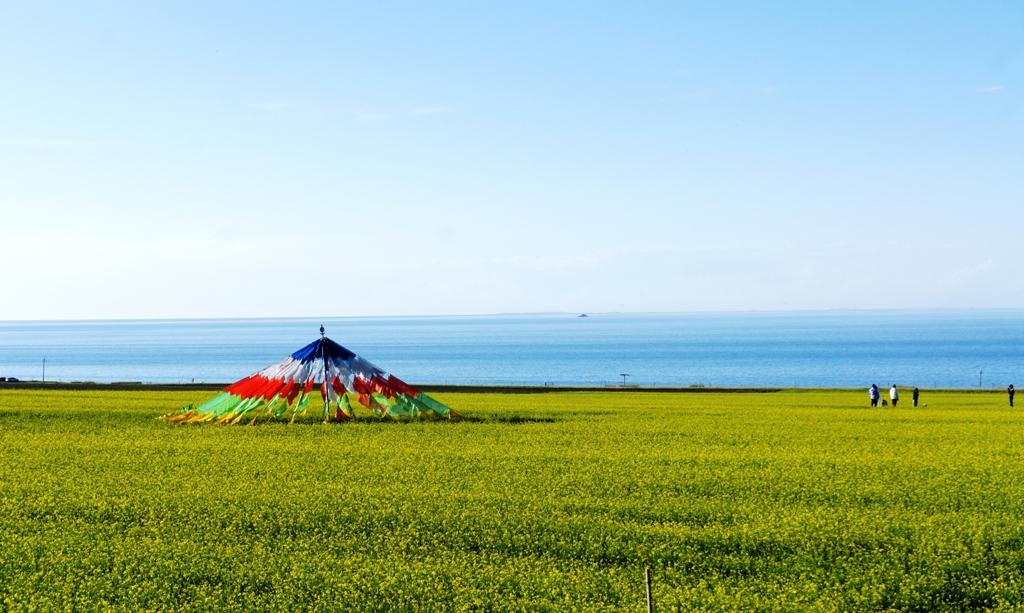 青海湖5.jpg