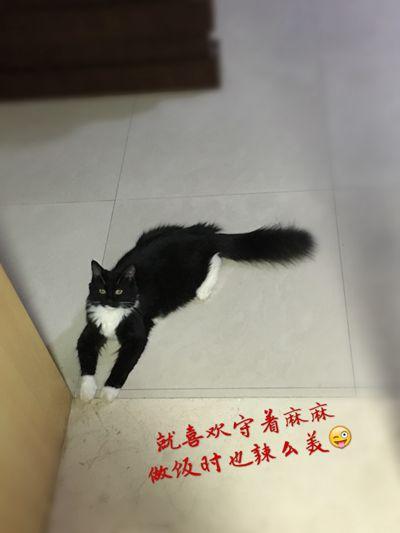 IMG_4735_副本.jpg