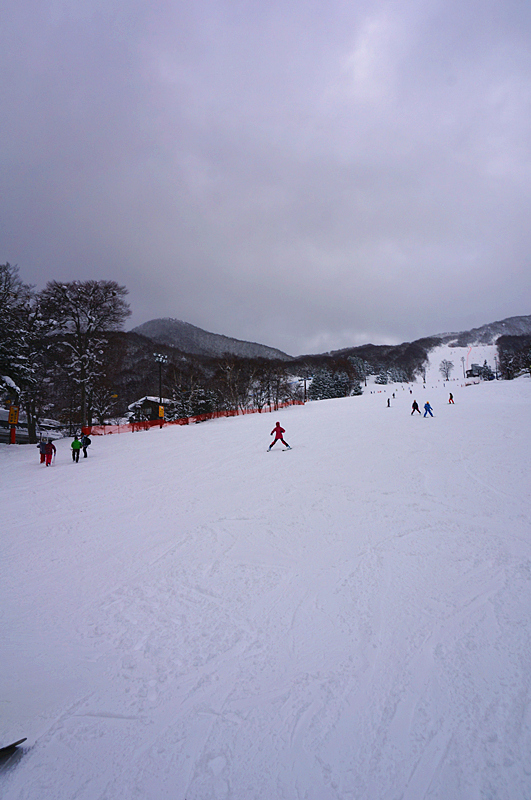 DSC09834_副本.jpg
